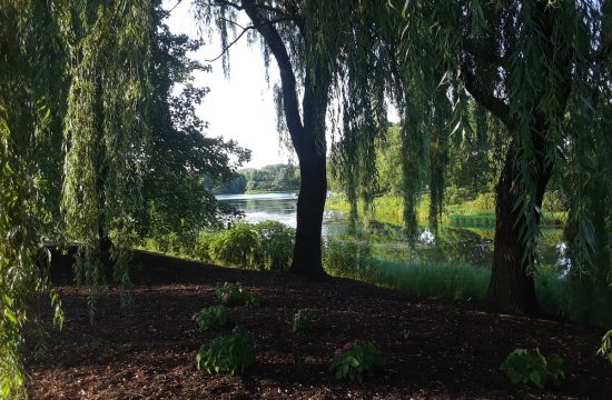 Chicago Botanic Garden - Cover